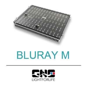 BluRay M